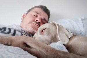 The effects of melatonin on relaxation and sleep